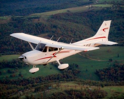 hawkflying