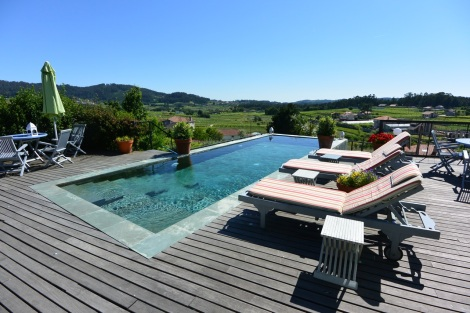 View of the swimming pool and vineyards beyond at Quinta de San Amaro, Meaño, Spain.