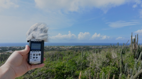 Recording sound in Savaneta, Aruba, DWI with the Zoom H4n.
